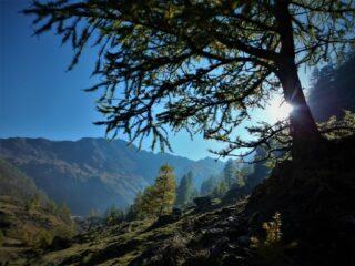 Luci d'autunno sopra la bergeria della Balma