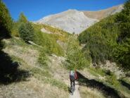 il sentiero di discesa verso Ceillac