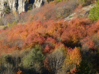 Ancora colori spettacolari scendendo
