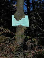 La natura non la freghi mica...!