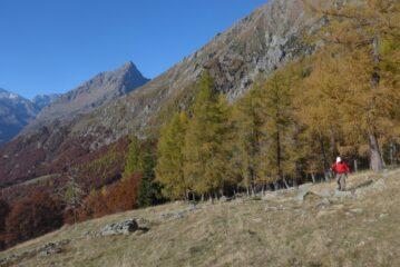 All'Alpe d'Attia